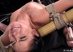 Pamper in back arch hogtie racking
